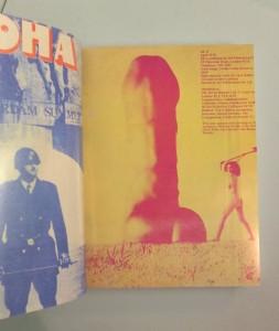 http://p-u-n-c-h.ro/files/gimgs/th-845_YESYESYES_Alternative_Press_1966_1977_Provo_Punk_16_1024x1024.jpg