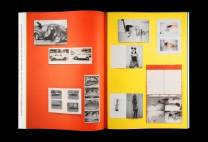 http://p-u-n-c-h.ro/files/gimgs/th-857_erik_van_der_weijde_this_is_not_my_book_11_0.jpg
