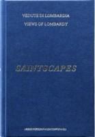 https://p-u-n-c-h.ro/files/gimgs/th-1734_th-522_20054_saintscapes_9788897753575_v3.jpg