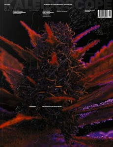 https://p-u-n-c-h.ro/files/gimgs/th-1757_kaleidoscope_36_ss20_-_cannabiz_the_gentrification_of_weed.jpg