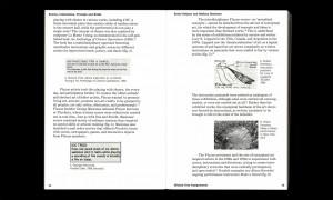 https://p-u-n-c-h.ro/files/gimgs/th-1761_9789492095756_Wicked_Arts_Assignments_Spread1_72_dpi-1582-1250-750-90.jpg