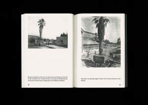 https://p-u-n-c-h.ro/files/gimgs/th-1823_christian-kosmas-mayer-the-book-of-record-of-the-palm-capsule-4-mark-pezinger-books-design-astrid-seme-S.jpg