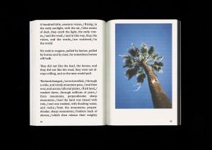 https://p-u-n-c-h.ro/files/gimgs/th-1823_christian-kosmas-mayer-the-book-of-record-of-the-palm-capsule-5-mark-pezinger-books-design-astrid-seme-S.jpg